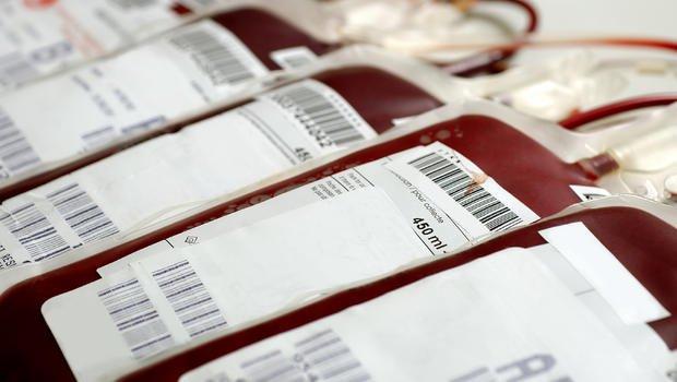Doação de sangue esta protegida do Zika virus - informacaobrasil.com.br